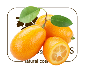 kumquat and fnf ONLY