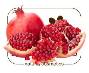 pomegranate and fnf ONLY
